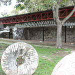 DSCI0104