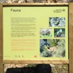 Infotafel Fauna